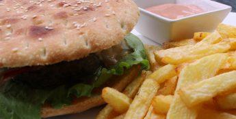 burger - web